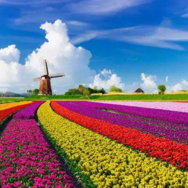 Le Pays Bas